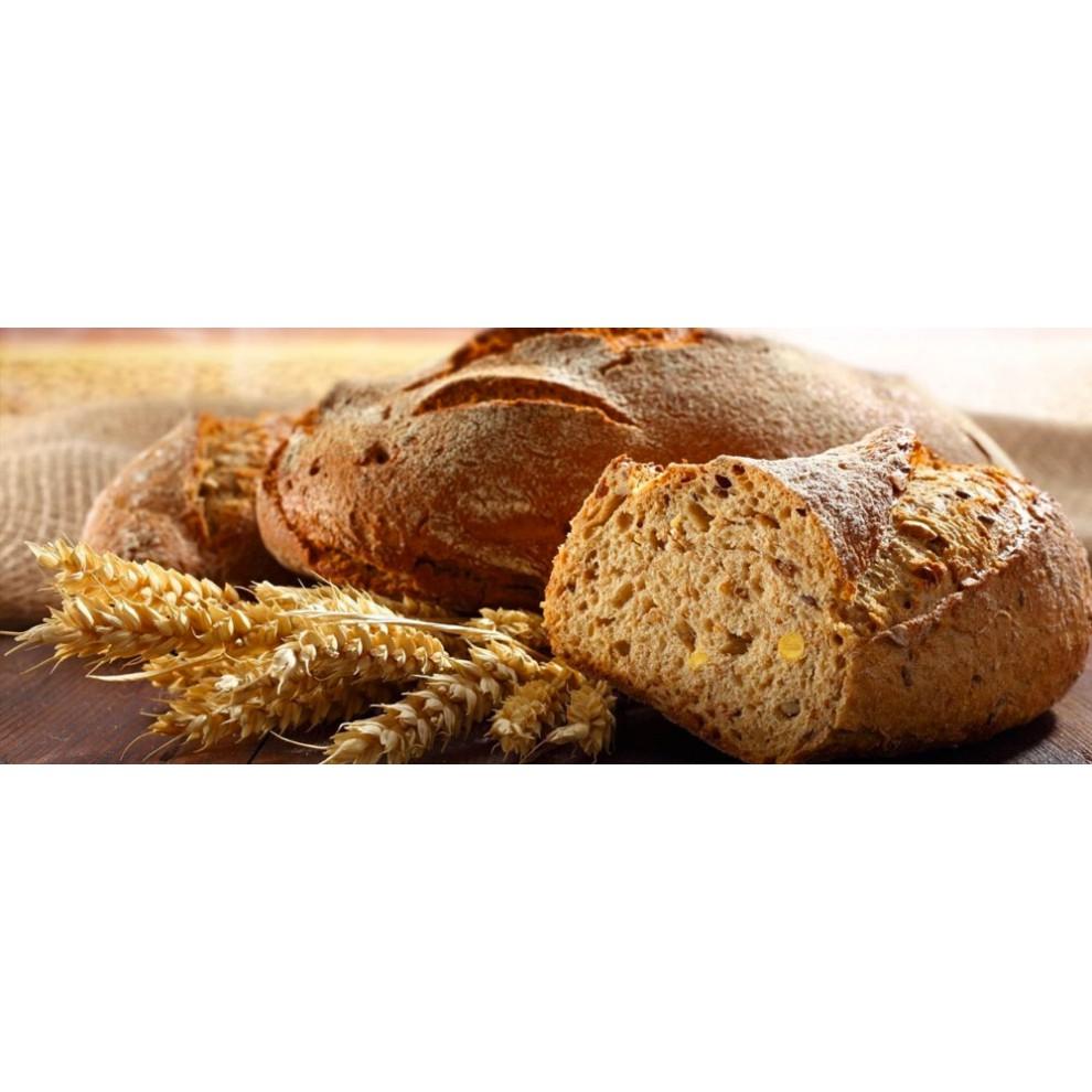 Производство хлеба и булочных изделий в печи Forni Fiorini BABY (до 30 кг/час)