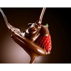 Шоколадное производство. Комплект для  шоколадных плиток и конфет с начинкой.